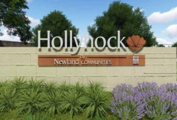 Community Highlight-Hollyhock, Frisco, TX